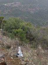 Sercel_508XT_Mountain-Blog-2